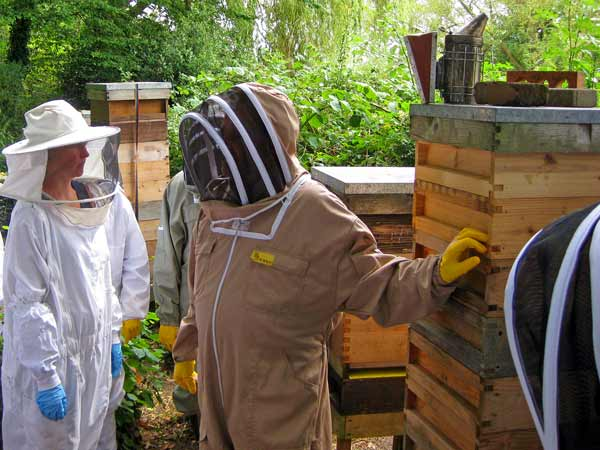 Steve Leveridge, education officer of the Barnet District Beekeepers Association, showing potential new recruits one of the hives