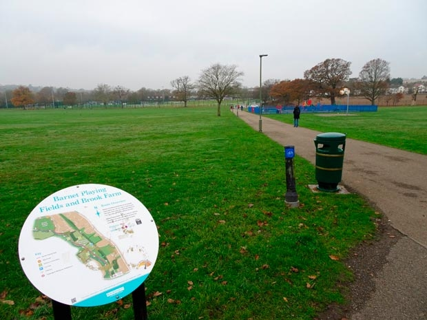 Barnet Playing Fields. The new hub would be built in the middle, beyond the playground (which would be replaced).