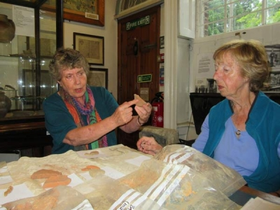 Barnet Museum volunteers Margaret Luck (left) and Pat Alison examine pottery and masonry fragments