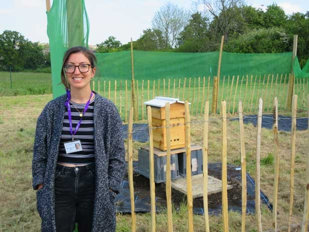 Two swarms of bees are the first arrivals at a school farm which is being established at Totteridge Academy under the care of charity farm manager Sarah Alun-Jones