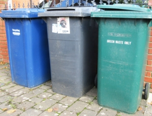 Charges planned for green garden waste bins