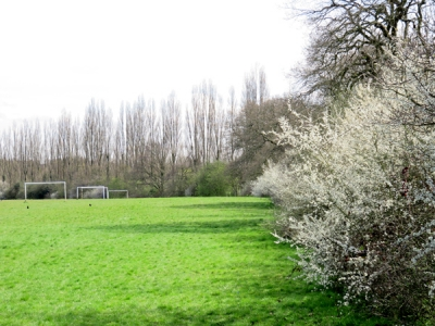 King George V Playing Field – the Council believe, a 'low quality, low value' link in the Dollis Brook green chain