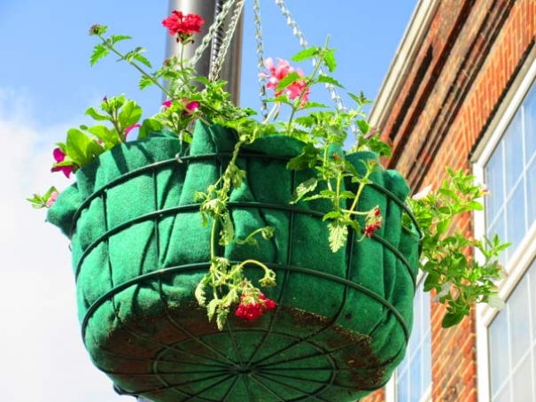 Hanging baskets on the High Street